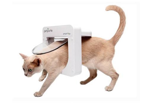 Прочие товары для кошек