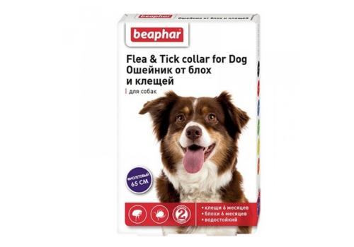 Ошейник Beaphar Flea & Tick collar от блох и клещей для собак, фиолетовый, 65см