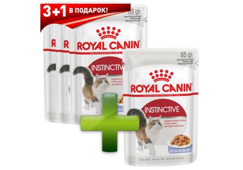 Комплект Корм влажный Royal Canin Instinctive (в желе) для кошек 85г x 3 + 1шт