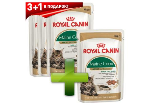 Комплект Корм влажный Royal Сanin Maine Coon Adult для кошек породы мейн-кун, в соусе 85г x 3  + 1шт