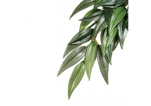 Растение для террариума Exo Terra РT3041 Ruscus, 55см