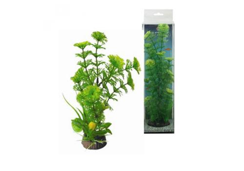 Композиция из растений Fauna Int. №13, 20см
