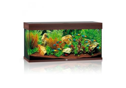 Аквариум Juwel Rio 180, 180л, коричневый