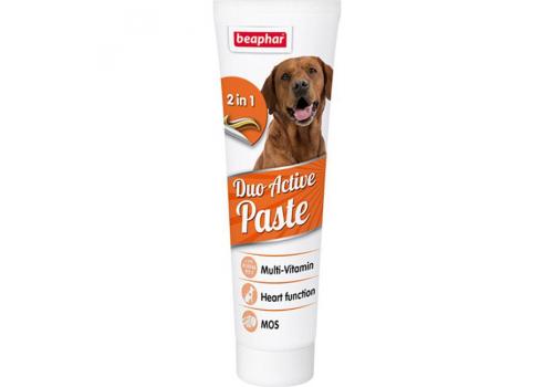 Beaphar Duo Active Paste Мультивитаминная паста для собак 100г