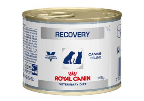 Диета Royal Canin Recovery для собак и кошек в период анорексии и выздоровления 195г