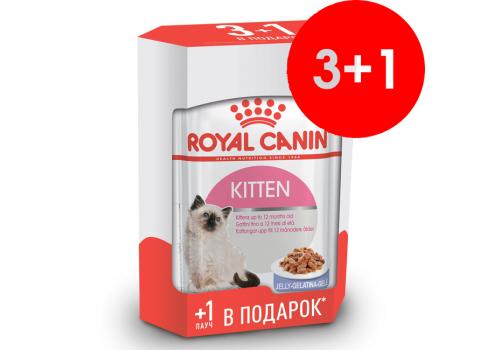 Комплект Корм влажный Royal Сanin Kitten для котят, паучи 85г, 3+1шт