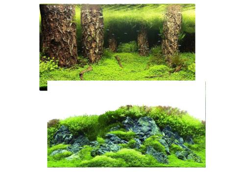 Фон двухсторонний клеевой Prime Затопленый лес и Камни с растениями, 30х60см (9086/9087)