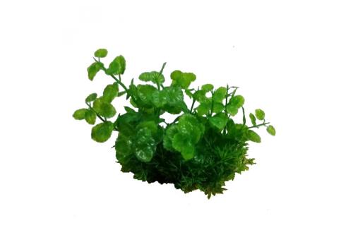 Композиция из пластиковых растений Prime PR-M624, 15см