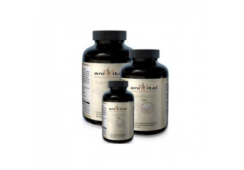 Витаминный комплекс AniVital CaniDerm для кожи и шерсти собак, 60 таб.