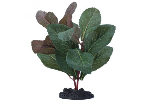 Растение шелковое Prime Гигрофила, 13см